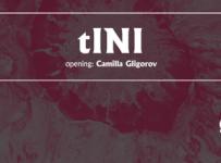 tini-tunnel-cover-035-2